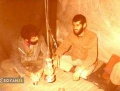 مختصری از زندگینامه سردار رشید اسلام سید محمد علوی